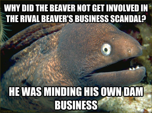WHY DID THE BEAVER NOT GET INVOLVED IN THE RIVAL BEAVER'S BUSINESS SCANDAL? HE WAS MINDING HIS OWN DAM BUSINESS - WHY DID THE BEAVER NOT GET INVOLVED IN THE RIVAL BEAVER'S BUSINESS SCANDAL? HE WAS MINDING HIS OWN DAM BUSINESS  Bad Joke Eel