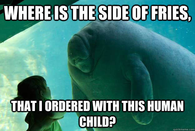 Where is the side of fries, that i ordered with this human child? - Where is the side of fries, that i ordered with this human child?  Overlord Manatee