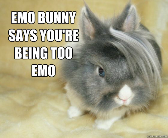emo bunny says you're being too emo