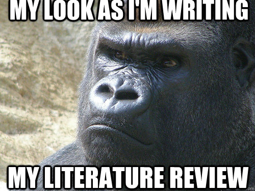 my look as i'm writing my Literature review - my look as i'm writing my Literature review  Grumpy Gorilla