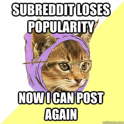 Subreddit loses popularity now i can post again - Subreddit loses popularity now i can post again  Hipster Kitty