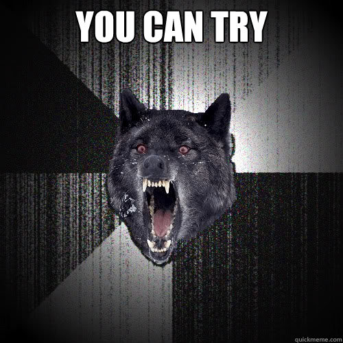 YOU CAN TRY  - YOU CAN TRY   insanitywolf