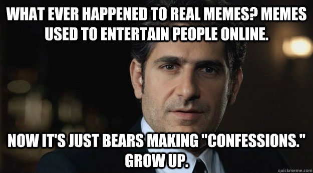 what ever happened to real memes? memes used to entertain people online. now it's just bears making