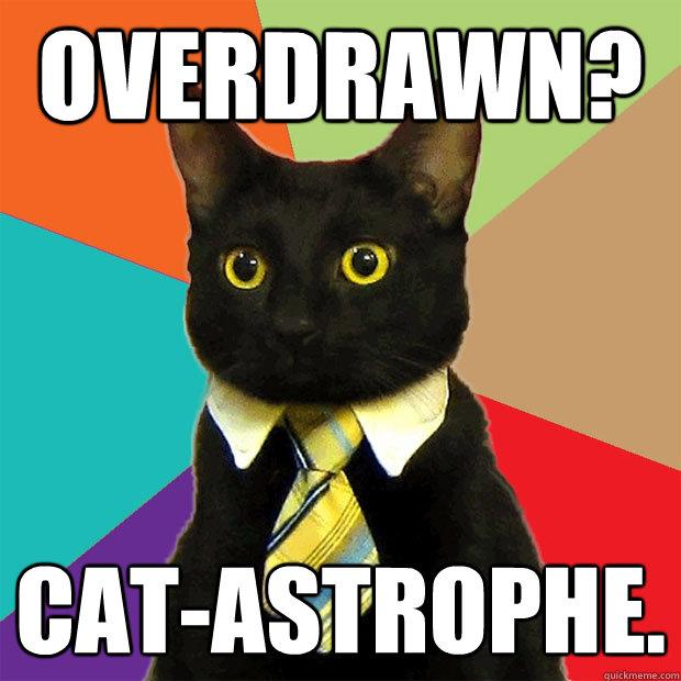 Overdrawn? Cat-astrophe.  Business Cat