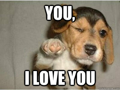 you, i love you