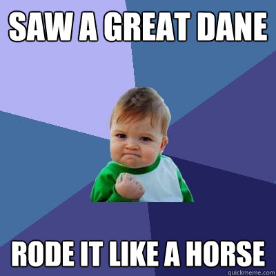 saw a great dane rode it like a horse - saw a great dane rode it like a horse  Success Kid