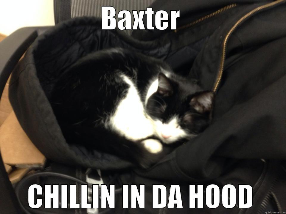 BAXTER CHILLIN IN DA HOOD Misc
