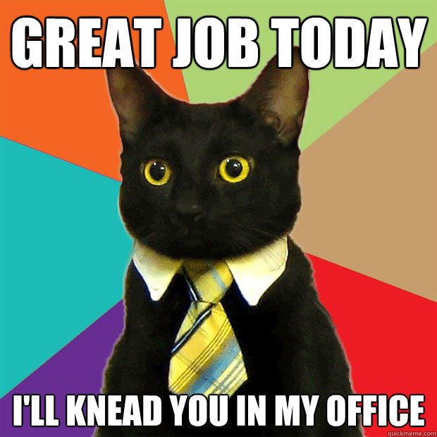Great job today I'll knead you in my office - Great job today I'll knead you in my office  Business Cat