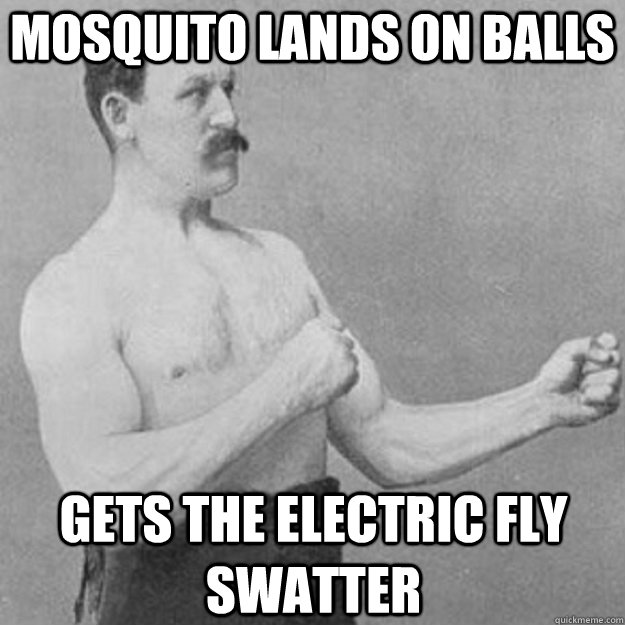 Mosquito lands on balls Gets the electric fly swatter - Mosquito lands on balls Gets the electric fly swatter  overly manly man