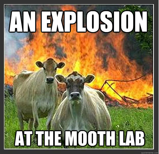 an explosion at the mooth lab - an explosion at the mooth lab  Evil cows
