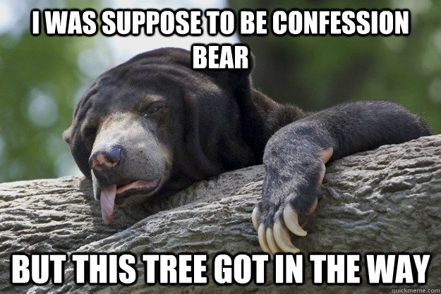 I was suppose to be confession bear But this tree got in the way - I was suppose to be confession bear But this tree got in the way  Excuses Bear