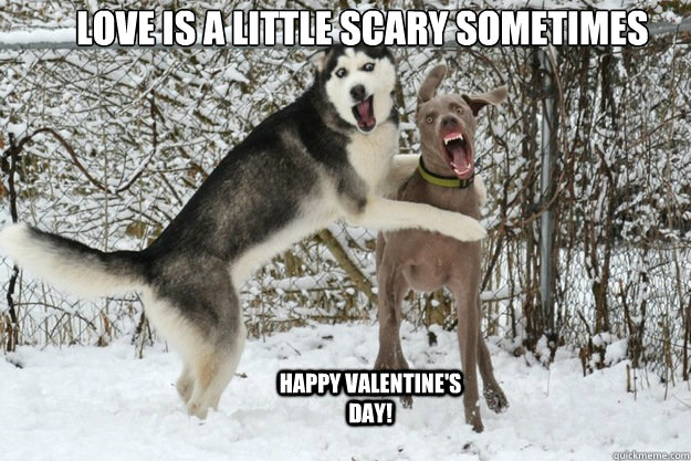 Love is a little scary sometimes  Happy Valentine's Day!  - Love is a little scary sometimes  Happy Valentine's Day!   Puppy Love