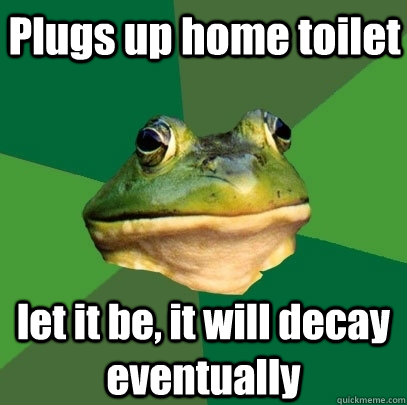 Plugs up home toilet let it be, it will decay eventually - Plugs up home toilet let it be, it will decay eventually  Foul Bachelor Frog