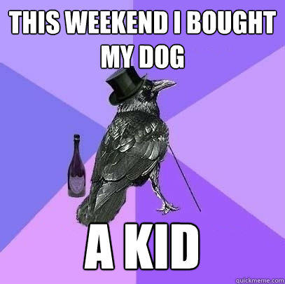 this weekend i bought my dog a kid  Rich Raven