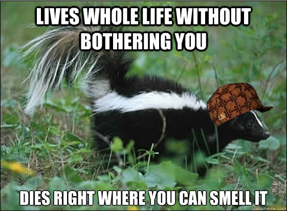 lives whole life without bothering you dies right where you can smell it  Scumbag Skunk