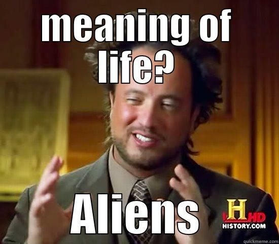 Meaning of Life - quickmeme