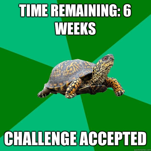 Time Remaining: 6 weeks CHALLENGE ACCEPTED  Torrenting Turtle