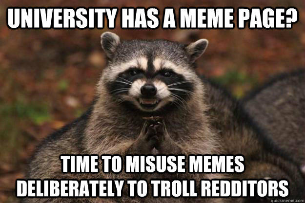 university has a meme page? time to misuse memes deliberately to troll redditors - university has a meme page? time to misuse memes deliberately to troll redditors  Evil Plotting Raccoon