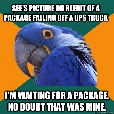 See's picture on reedit of a package falling off a ups truck i'm waiting for a package. no doubt that was mine. - See's picture on reedit of a package falling off a ups truck i'm waiting for a package. no doubt that was mine.  Paranoid Parrot