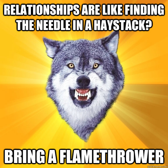Relationships are like finding the needle in a haystack? BRING A FLAMETHROWER - Relationships are like finding the needle in a haystack? BRING A FLAMETHROWER  Courage Wolf