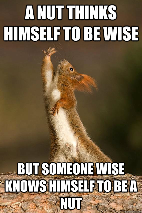A Nut thinks himself to be wise But someone wise knows himself to be a Nut