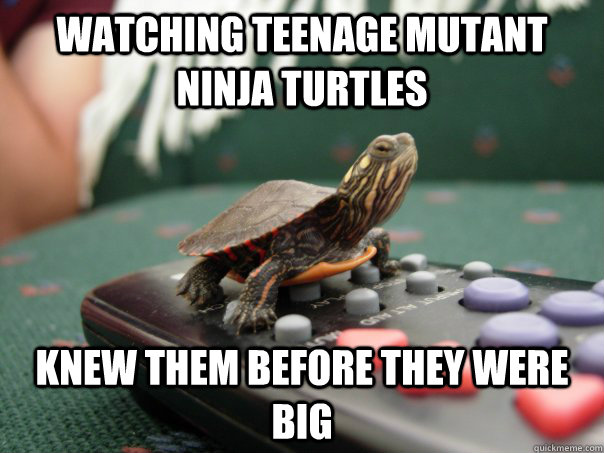 7529ab61868e770211a7e66314f0370fd9d35bd322004a2209c3760916f37fc9 watching teenage mutant ninja turtles knew them before they were