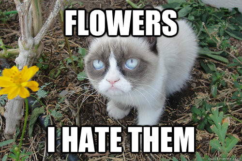 Flowers I hate them