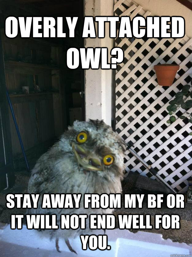 Overly Attached Owl? Stay away from my bf or it will not end well for you.