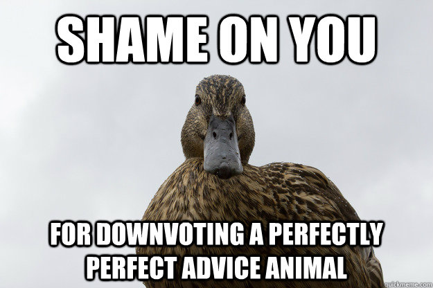 Shame on you for downvoting a perfectly perfect advice animal