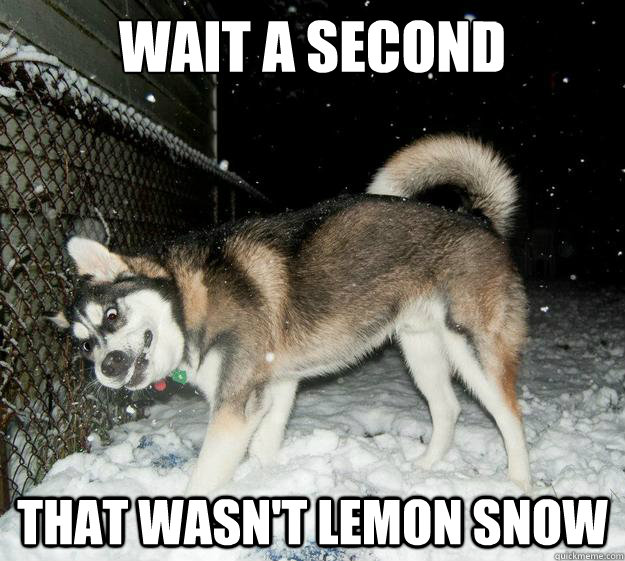 wait a second That wasn't lemon snow
