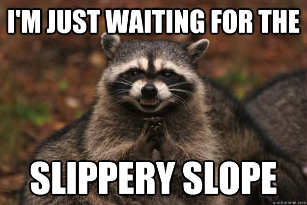 I'm just waiting for the slippery slope - I'm just waiting for the slippery slope  Evil Plotting Raccoon