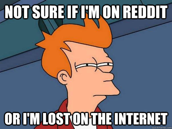 not sure if I'm on reddit or I'm lost on the internet - not sure if I'm on reddit or I'm lost on the internet  Futurama Fry