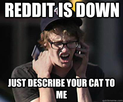 reddit is down just describe your cat to me