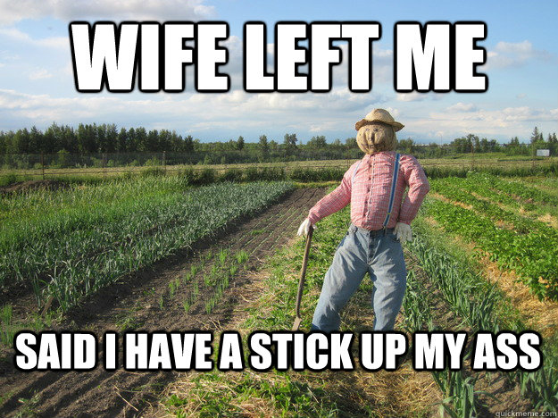 Wife left me said i have a stick up my ass  Scarecrow