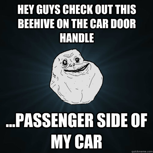 hey guys check out this beehive on the car door handle ...passenger side of my car - hey guys check out this beehive on the car door handle ...passenger side of my car  Forever Alone