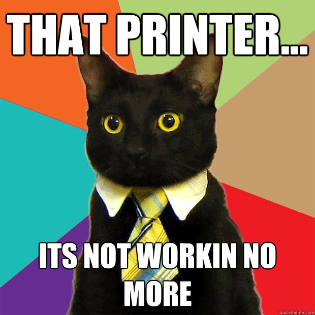 That printer... its not workin no more - That printer... its not workin no more  Business Cat