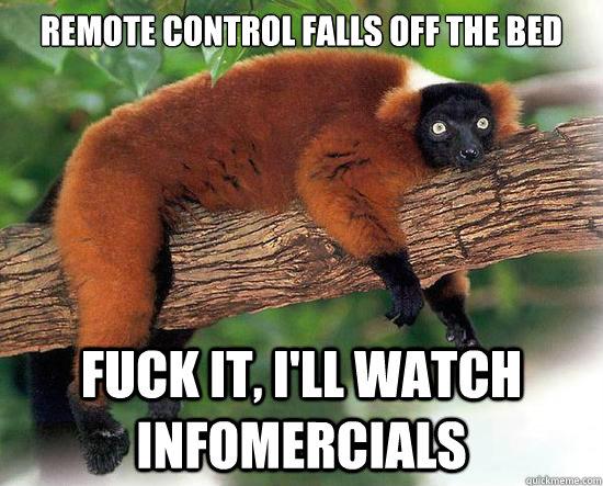 Remote control falls off the bed fuck it, i'll watch infomercials - Remote control falls off the bed fuck it, i'll watch infomercials  Lazy Lemur