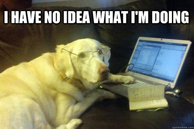 I have no idea what i'm doing - I have no idea what i'm doing  I have no idea what Im doing