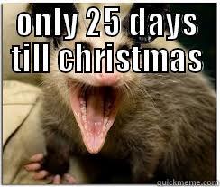 possum christmas - quickmeme
