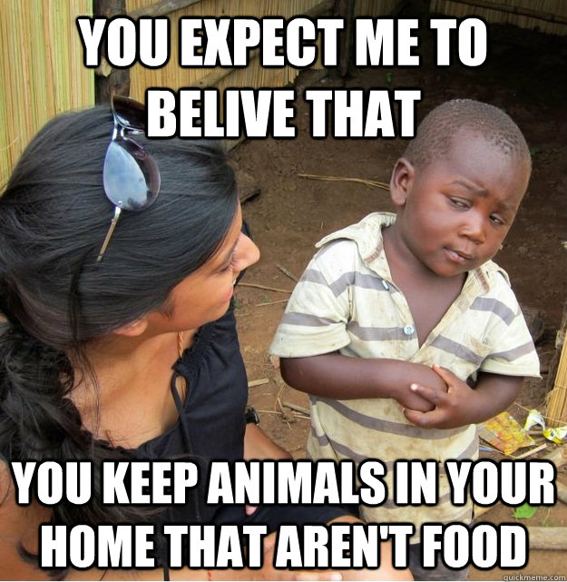 YOU EXPECT ME TO BELIVE THAT you keep animals in your home that aren't food - YOU EXPECT ME TO BELIVE THAT you keep animals in your home that aren't food  Misc