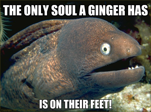 The only soul a ginger has is on their feet! - The only soul a ginger has is on their feet!  Bad Joke Eel