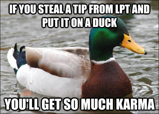 If you steal a tip from LPT and put it on a duck You'll get so much karma - If you steal a tip from LPT and put it on a duck You'll get so much karma  Actual Advice Mallard