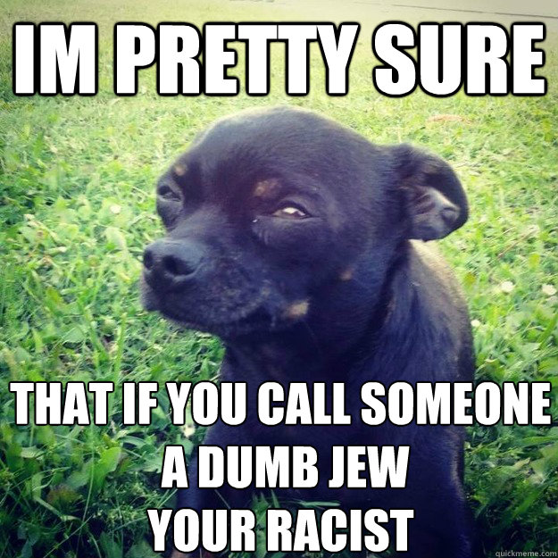 IM PRETTY SURE that if you call someone  a dumb jew your racist  - IM PRETTY SURE that if you call someone  a dumb jew your racist   Skeptical Dog