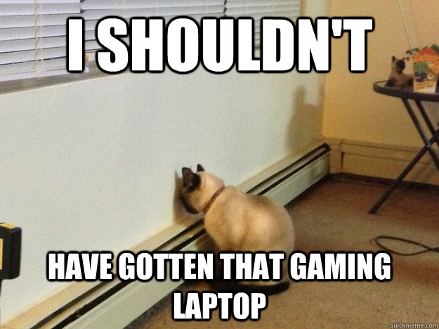 I shouldn't have gotten that gaming laptop - I shouldn't have gotten that gaming laptop  Regretful Cat