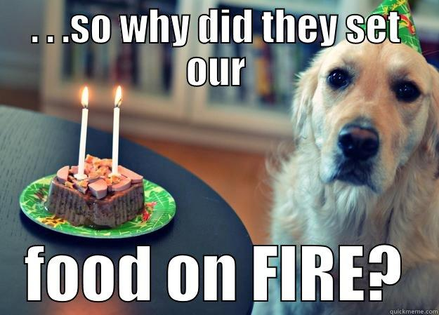 . . .SO WHY DID THEY SET OUR FOOD ON FIRE? Sad Birthday Dog
