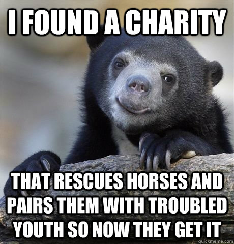 i found a charity that rescues horses and pairs them with troubled youth so now they get it