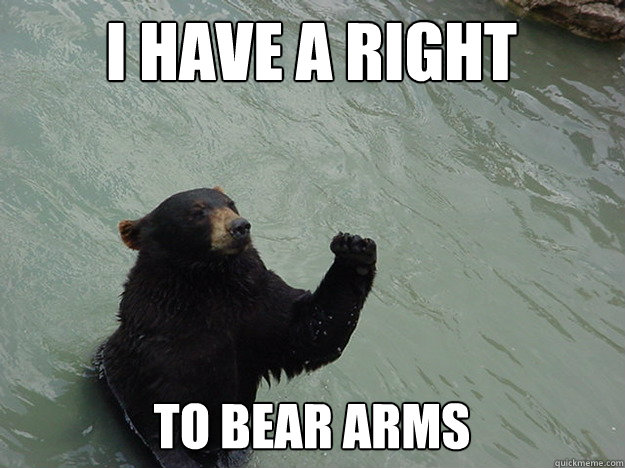 I HAVE A RIGHT TO BEAR ARMS - I HAVE A RIGHT TO BEAR ARMS  Vengeful Bear