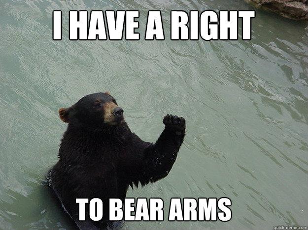 76652207fe01ebba7bf347c7c830ea3eac666509095c85fd8e644f9414c29bdc vengeful bear memes quickmeme,The Right To Bear Arms Meme