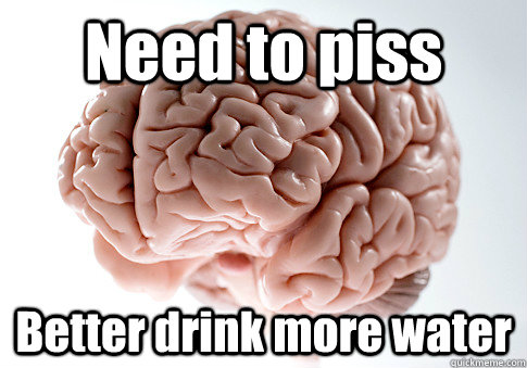 Need to piss Better drink more water - Need to piss Better drink more water  Scumbag Brain