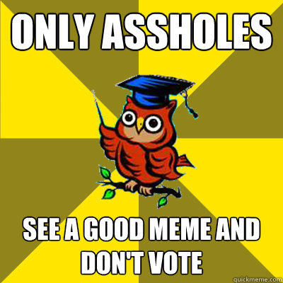 only assholes see a good meme and don't vote - only assholes see a good meme and don't vote  Observational Owl
